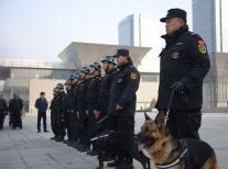 潍坊保安服务分析了摄像头没有图像的原因